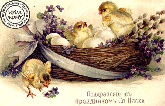 http://www.kyda-komy.ru/Pasha2.jpg