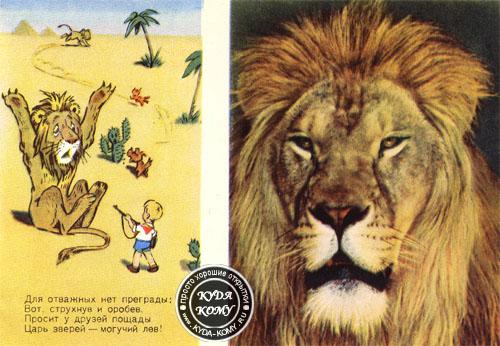 Картинка или открытка лев