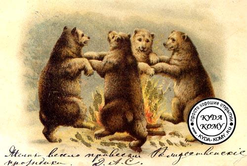 Медведи открытка